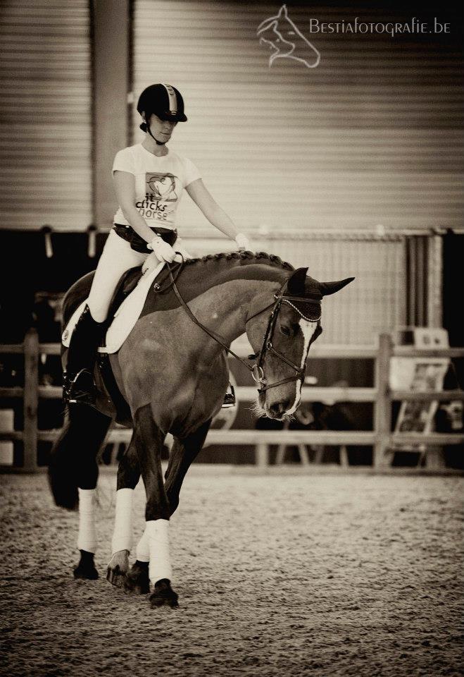 Esther en Bo'Ya tonen tijdens Flanders Horse Expo 2013 één van de basisrijhulpen: het volgen van de binnenteugel