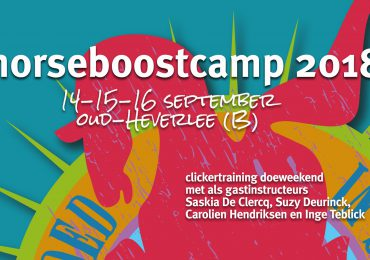 HorseBoostCamp 2018